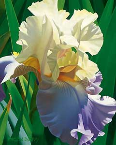 """Brian Davis Hand Signed and Number Limited Edition Giclee on Canvas: """"Kauai's Tropical Beauty"""""""