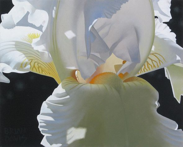 "Brian Davis Hand Signed Limited Edition Canvas Giclee:""Iris Dream"""