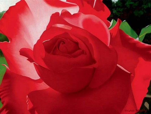 """Brian Davis Handsigned and Numbered Limited Edition Giclee on Canvas:""""Brilliant Red Solo Rose"""""""