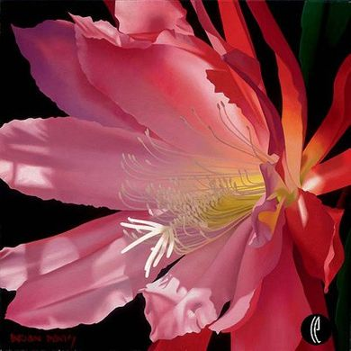 """Brian Davis Handsigned and Numbered Limited Edition Giclee on Canvas:""""Crimson Fire"""""""