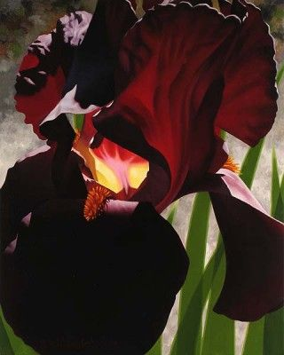 """Brian Davis Handsigned and Numbered Limited Edition Giclee on Canvas: """"Deep Red Iris Aflame """""""