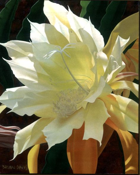 """Brian Davis Handsigned and Numbered Limited Edition Giclee on Canvas:""""Enlightenment"""""""