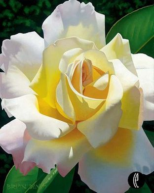 """Brian Davis Handsigned and Numbered Limited Edition Giclee on Canvas:""""Love's Rose"""""""