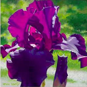 """Brian Davis Handsigned and Numbered Limited Edition Giclee on Canvas:""""Passionate Purple Iris"""""""