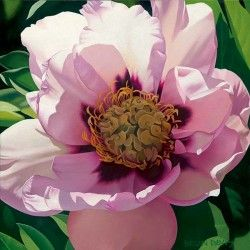 "Brian Davis Handsigned and Numbered Limited Edition Giclee on Canvas:""Pink Peony"""