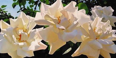 "Brian Davis Handsigned and Numbered Limited Edition Giclee on Canvas:""Radiant Rose Quartet"""