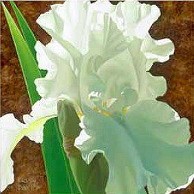 """Brian Davis Handsigned and Numbered Limited Edition Giclee on Canvas:""""Solitary White Iris"""""""
