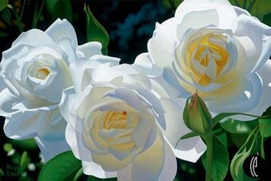 """Brian Davis Limited Anniversary Edition Giclee on Canvas :""""Sunny Afternoon Roses"""""""