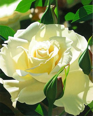 "Brian Davis Limited Edition Giclee on Canvas:""Pale Yellow Beauty"""