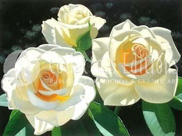 "Brian Davis Limited Edition Giclee on Canvas:""Rose in the Shadows"""