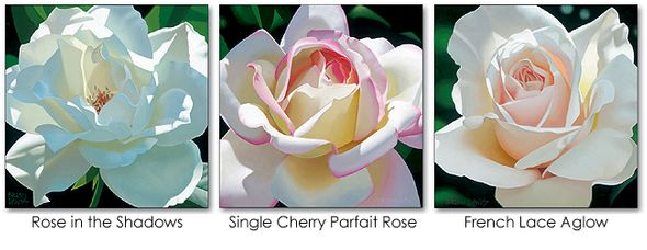 "Brian Davis Limited Edition Giclee on Canvas Suite of 3:""The Rose Trio Suite """