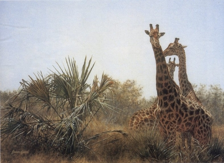 "Brian Jarvi  Limited Edition Print: ""Giraffes and Lala Palms"""