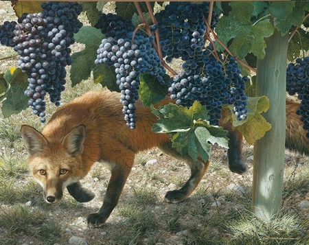 "Carl Brenders Hand Signed and Numbered Limited Edition: ""Between the Vines - Red Fox"""