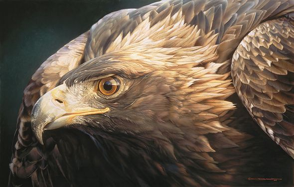 """Carl Brenders Hand Signed and Numbered Limited Edition Canvas Giclee:""""Sovereign Gold"""""""