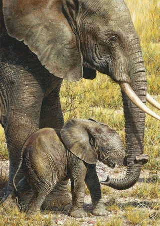"""Carl Brenders  Hand Signed and Numbered Limited Edition Print and Canvas Giclee:""""Baby Mine"""""""