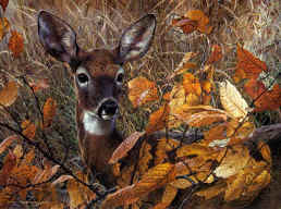"""Carl Brenders Handsigned and Numbered Limited Edition Giclee on Canvas: """"Autumn Lady"""""""