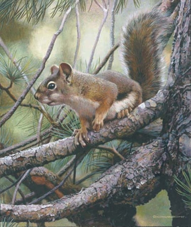 """Carl Brenders Handsigned and Numbered Limited Edition Giclee:""""Social Climber"""""""