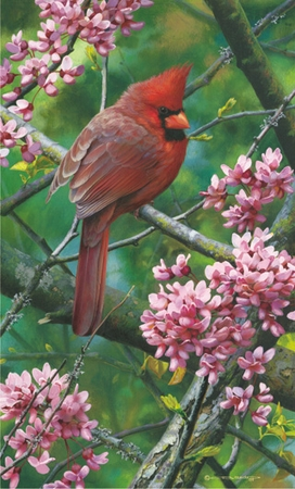 """Carl Brenders Limited Edition Print:""""Spark of Ruby - Cardinal """""""