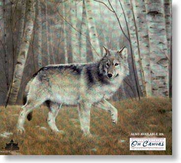 """CHARLES FRACE' 29X22 Secondary Market Art: """"WATCHFUL GREY WOLF"""""""