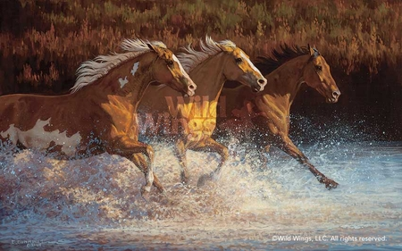 """Chris Cummings Hand Signed and Numbered Limited Edition Print: """"Thundering Water-Horses"""""""
