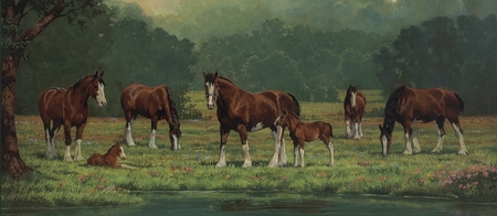 "Chris Cummings Handsigned & Numbered Limited Edition Print:""Pastoral Clydesdales"""