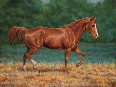 "Chris Cummings Limited Edition Print: ""That's My Horse - Sorrel"""