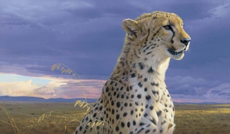 """Daniel Smith Hand Signed and Numbered Limited Edition:"""" African Tempest - Cheetah """""""