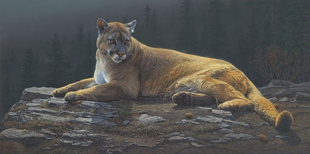 """Daniel Smith Handsigned and Numbered Limited Edition Giclee Print: """"Radiant Repose"""""""