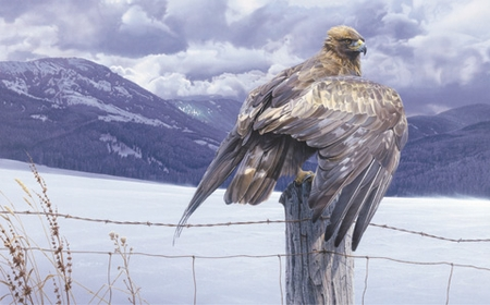 """Daniel Smith Limited Edition Print:""""Wings of Gold"""""""
