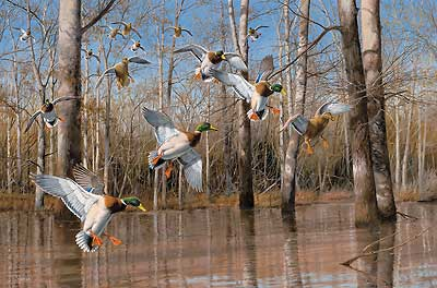 """David A. Maass Handsigned and Numbered Limited Edition Artist Proof Print: """"Waterfowling Hot Spots"""""""