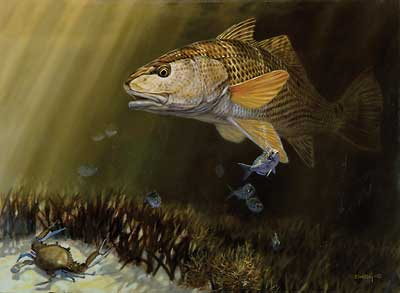"""Don Ray Handsigned and Numbered Limited Edition Print: """"Red & Blue-Red Fish"""""""