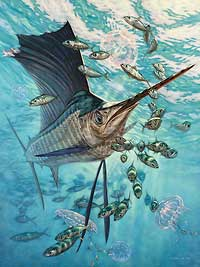"""Don Ray Handsigned and Numbered Limited Edition Print: """"Sailfish & Moon Jellies"""""""