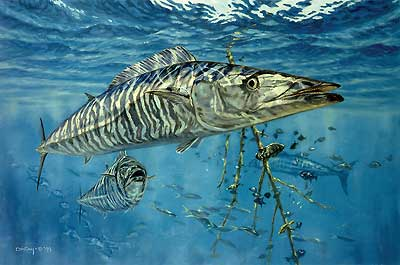 """Don Ray Handsigned and Numbered Limited Edition Print: """"Suspended Animation-Wahoo"""""""
