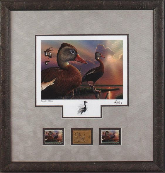 """Federal Duck Stamp Framed Print EXECUTIVE Limited Edition by Eddie LeRoy:""""Black-Bellied Whistling-Duck"""""""