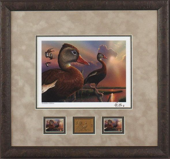 """Federal Duck Stamp Framed Print MEDALLION Limited Edition by Eddie LeRoy:""""Black-Bellied Whistling-Duck"""""""