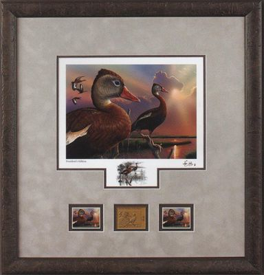 """Federal Duck Stamp Framed Print PRESIDENT'S 2020-21 Limited Edition by Eddie LeRoy:""""Black-Bellied Whistling-Duck"""""""