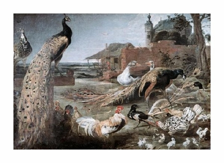 """Frans Snyders Fine Art Open Edition Giclée:""""Crow in Peacock Feathers"""""""