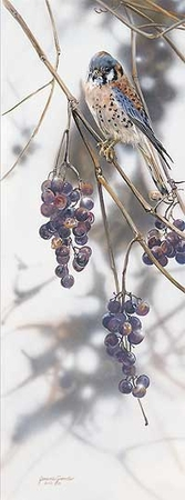 """Janene Grende Handsigned & Numbered Limited Edition Print:""""Grape Expectations"""""""
