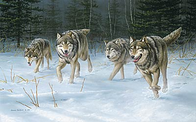 "Jim Hautman Limited Edition Print:""On The Move - Wolves"""