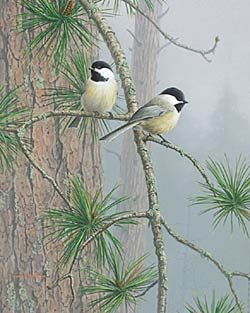 """Jim Hautman Limited Edition Print:""""Red Pine and Chickadees"""""""