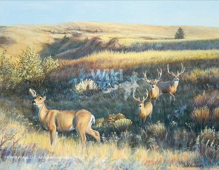"""Jim Kasper Hand Signed and Number Limited Edition Print:""""Showing Off – Mule Deer"""""""