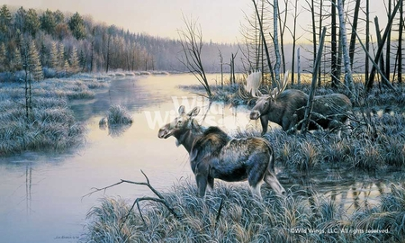 "Jim Kasper Hand Signed and Number Limited Edition Print:""Frosty Sojourn – Moose"""