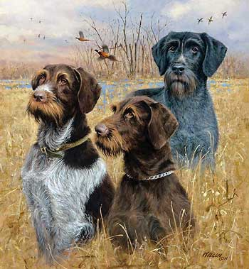 "Jim Killen Hand Signed and Numbered Limited Edition Print: ""Great Hunting Dogs-Drahthaars"""