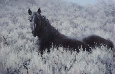 "Jim Rey Handsigned & Numbered Limited Edition:""Mustang In The Sage"""