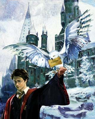 "Jim Salvati Harry Potter Canvas Giclee Artist Proof Co-Signed By Daniel Radcliffe:""Harry & Hedwig"""