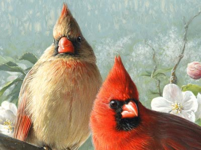 """Joe Hautman Handsigned and Numbered Limited Edition: """"Orchard Cardinals"""""""