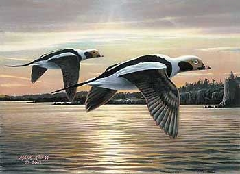 "Mark Kness Hand-signed and Numbered Limited Edition Print: ""2003 MN Duck Stamp Print:"""