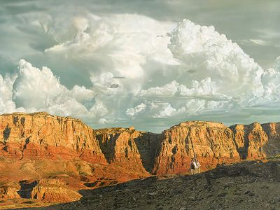 """John Bye Open Edition Gallery Wrap Canvas Giclee: """"Land of the Brave"""""""