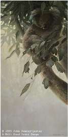 """John Seerey – Lester Limited Edition Print:""""Child Of The Outback"""""""