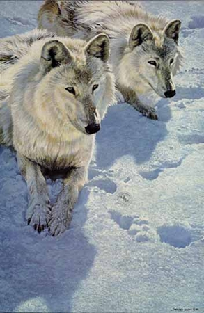 """John Seerey-Lester Limited Edition Print: """"Sisters- Artic Wolves"""""""